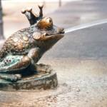 kikker-fontein